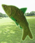Рыба (искусственный газон)